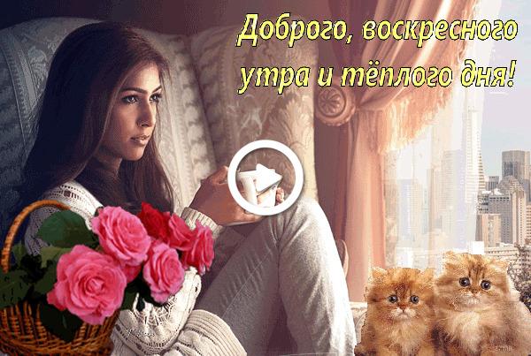 Postcard free upr, girl, cats