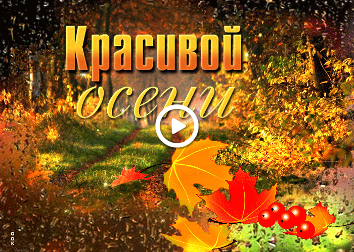 Postcard free sweet beautiful fall, leaves, tex