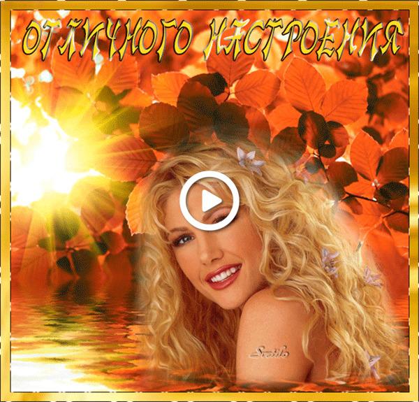 Postcard free cheerful animation, autumn, foliage