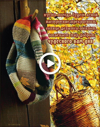 Postcard free bird, scarf, basket