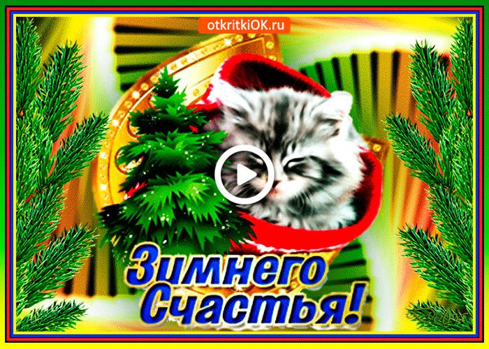 Postcard free winter happiness, request, kitten