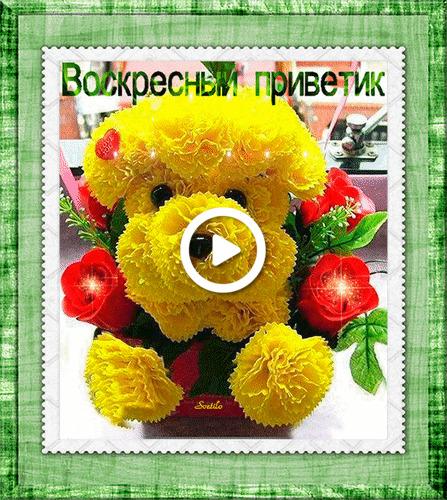 Postcard free roses, flower dog, flowers