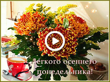 Postcard free saucer, three orange chrysanthemums, coffee cup
