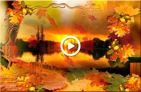 Postcard free lake, sunset, leaves