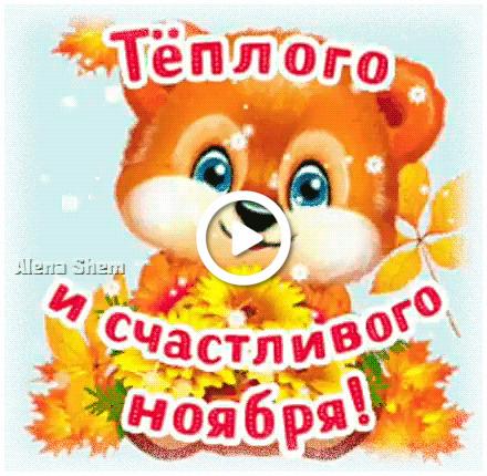 Postcard free bear cub, autumn, november