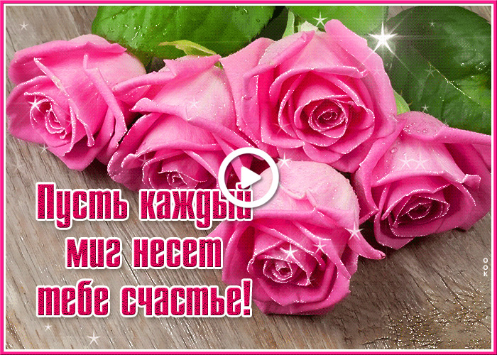 Postcard free super with roses, flowers, pink roses