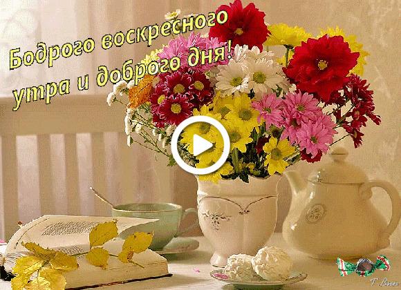 Postcard free fall sunday wish, moods, bouquet