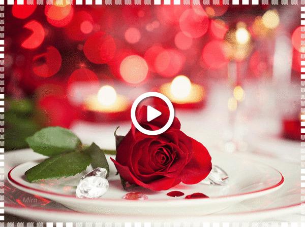 Postcard free rose, celebrations, decoration