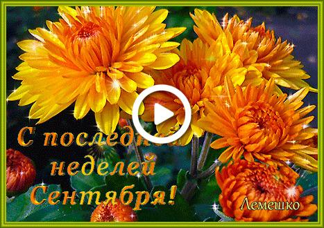 Postcard free orange chrysanthemum bouquet, 3-d text, last day of september