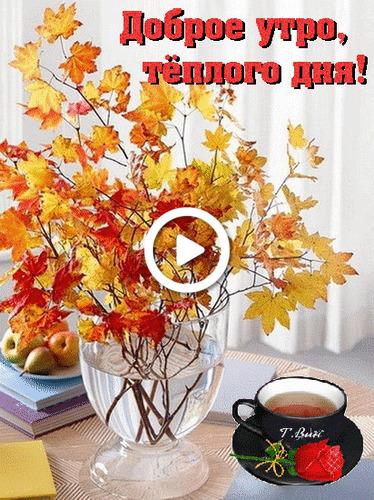 Postcard free morning, good fall monday morning, good fall morning